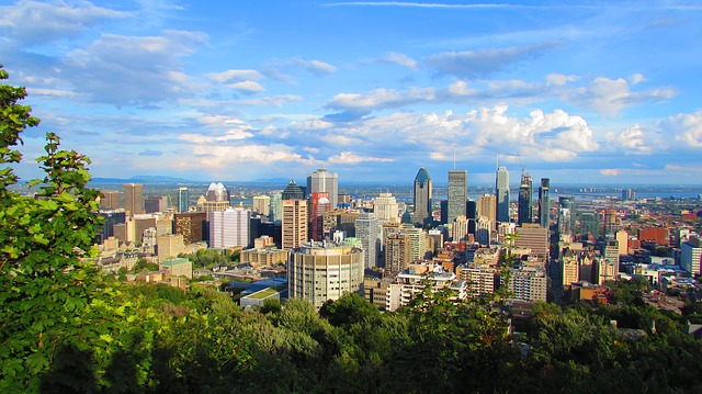 How Do We Provide Excel Consulting in Montréal