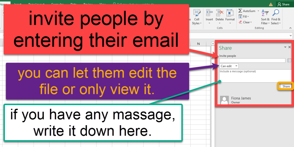 Share the Excel workbook by entering others email